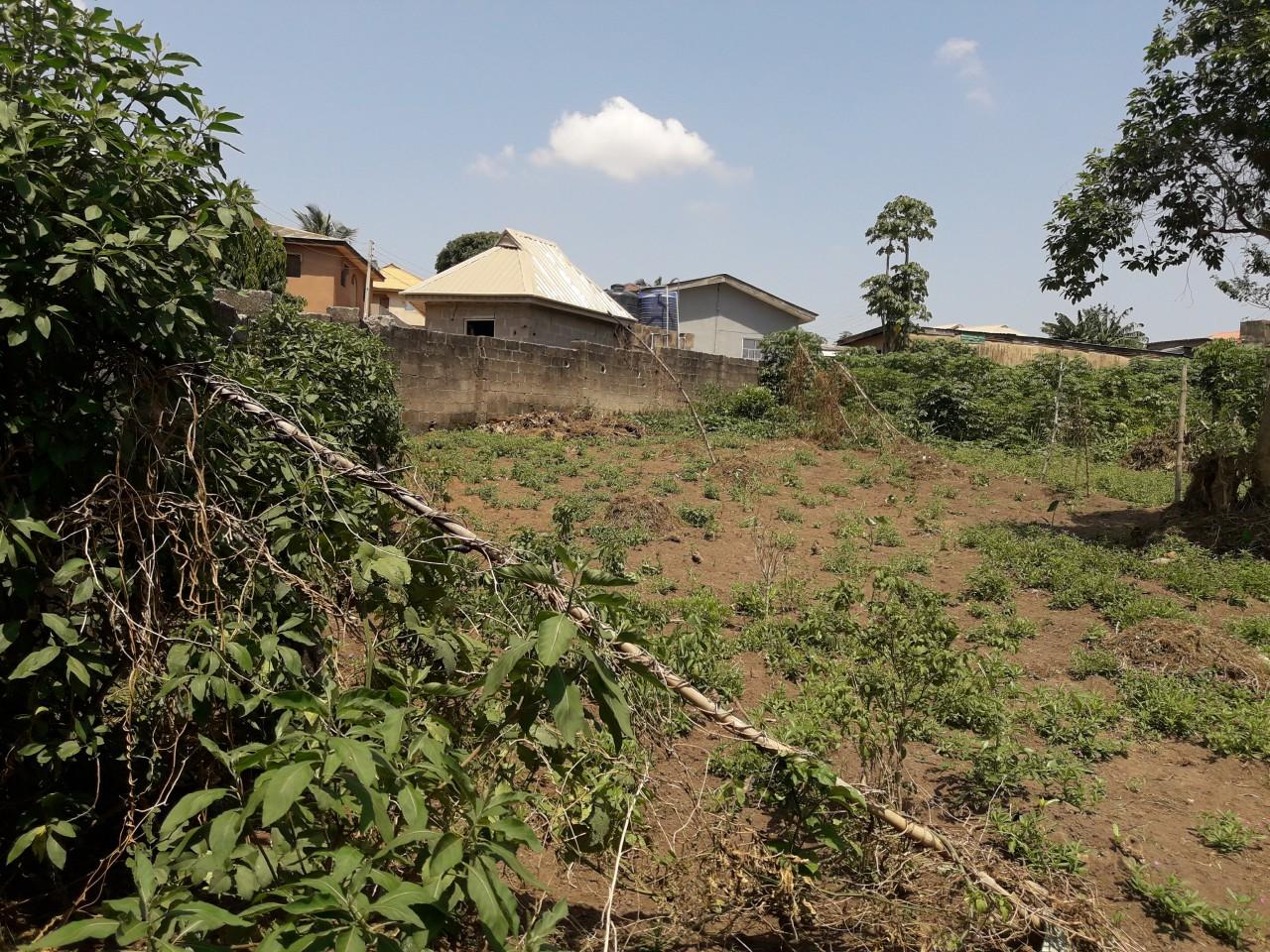 Ikorodu land for sale 3